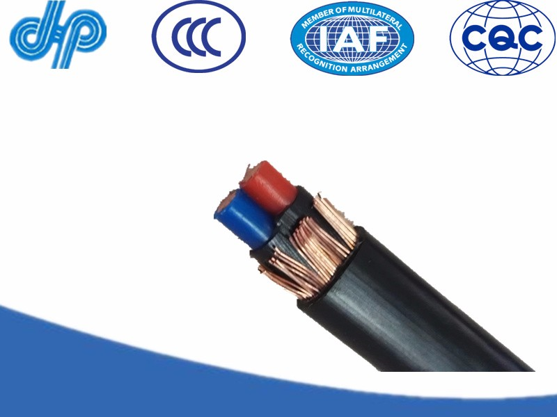 Aerial concentric service cable With communication cable
