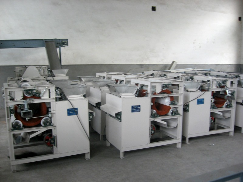Introduction to Work Flow of Faba Bean Peeling Machine
