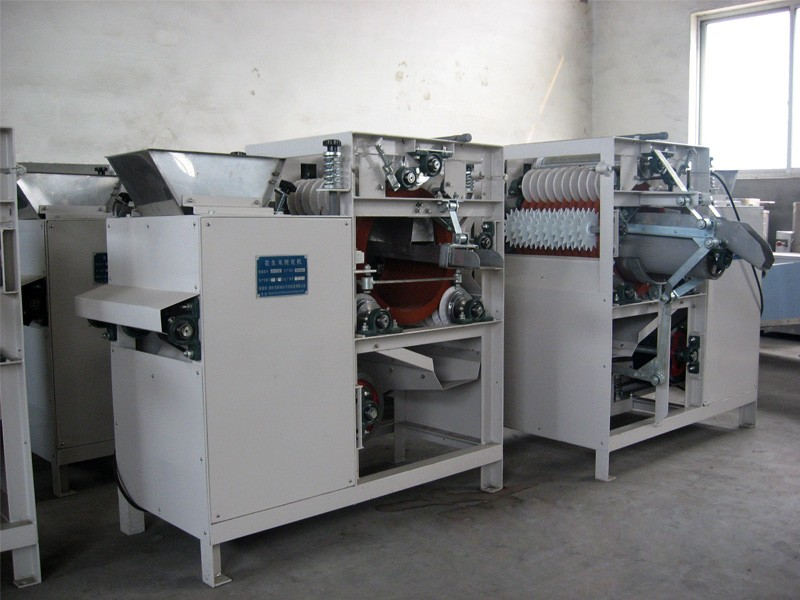 DTJ Broad Bean Peeling Machine