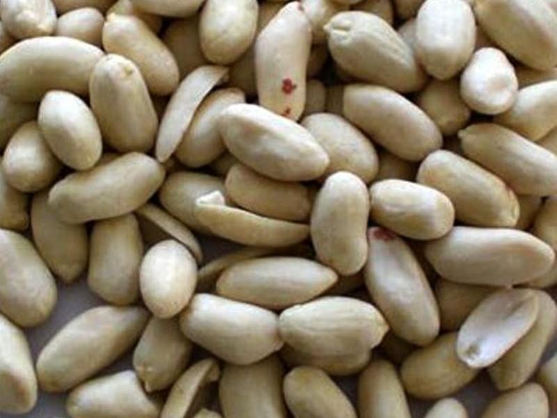 peanut grinder