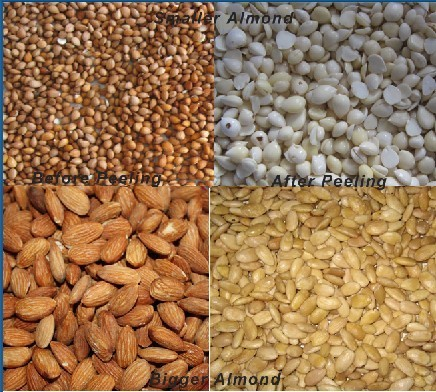 Almond Blaching Machine