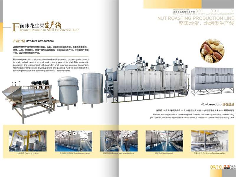 flavored nut processing line