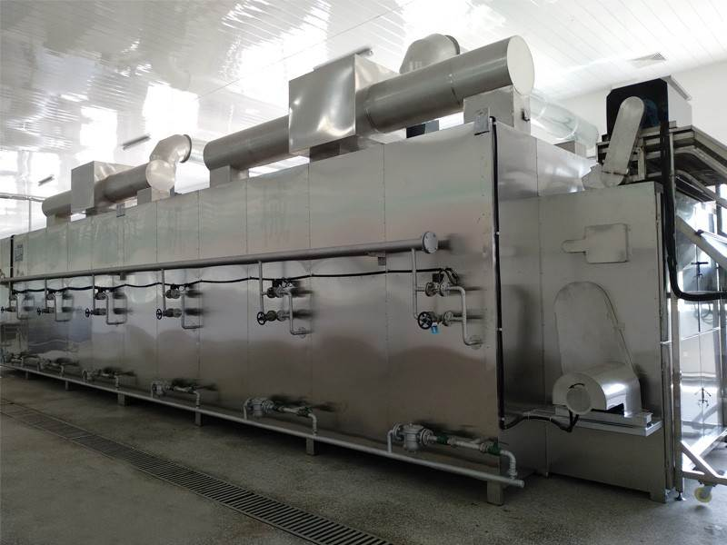 Fruit Drying Machine Manufacturer