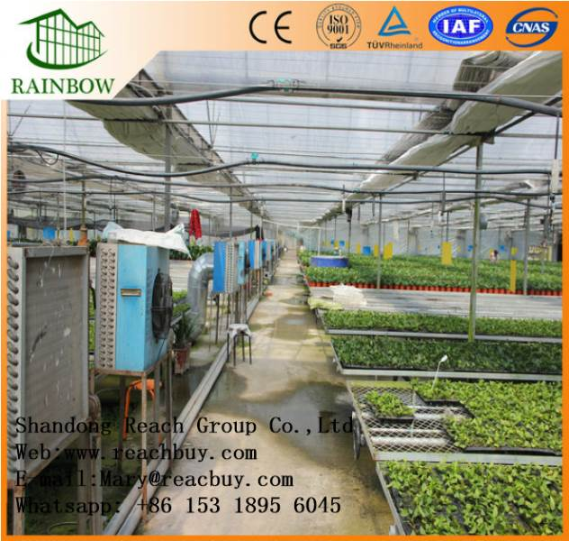 Multi span arch type film greenhouse