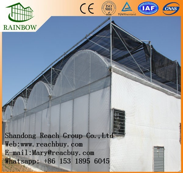 Perfect Multi span arch type film greenhouse