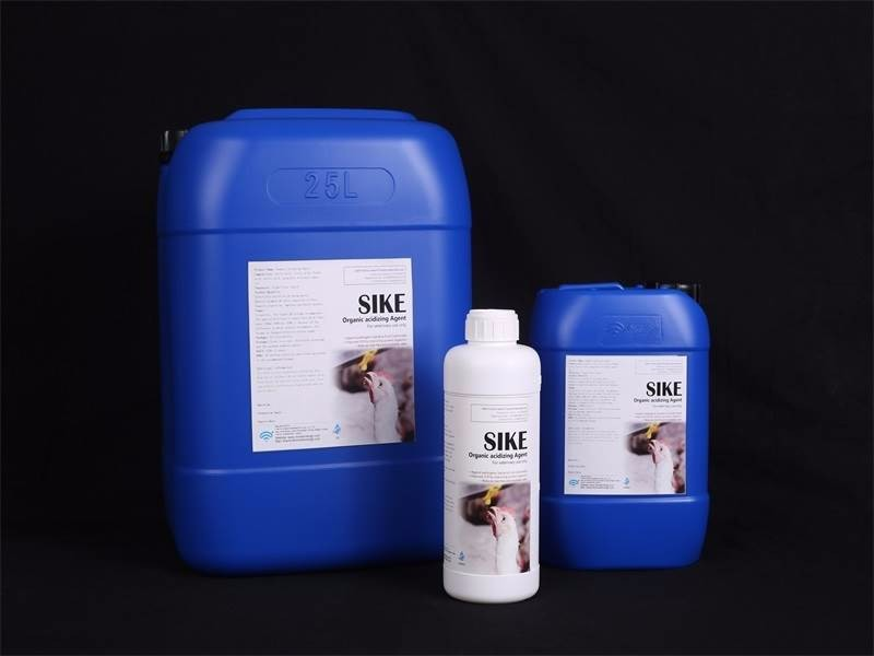 Professional Manufacturer poultry additives