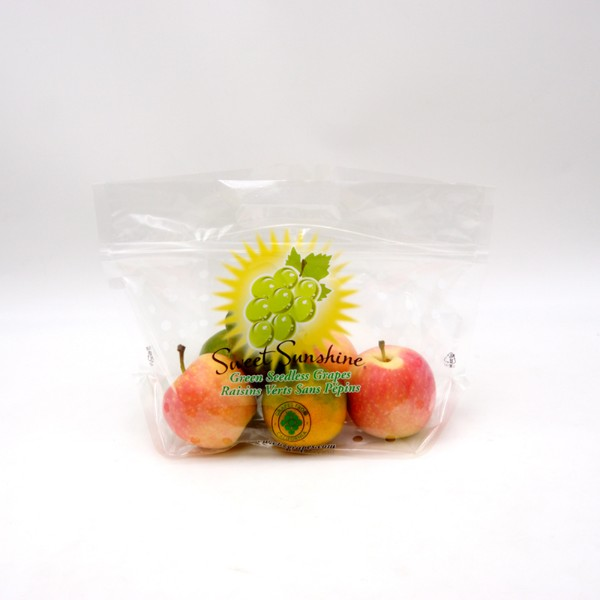 made in china fruit bags with handle