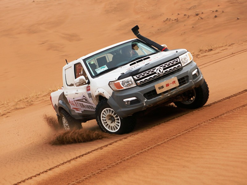 Discount Price Dubai rich pickup for sale