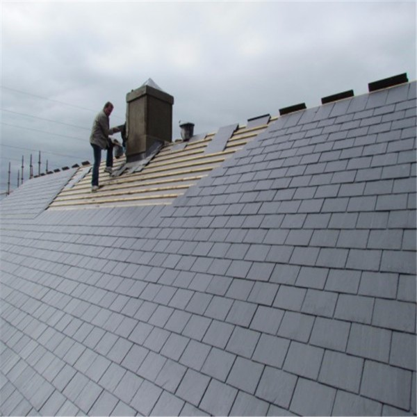 china Excellent Quality slate tile exterior