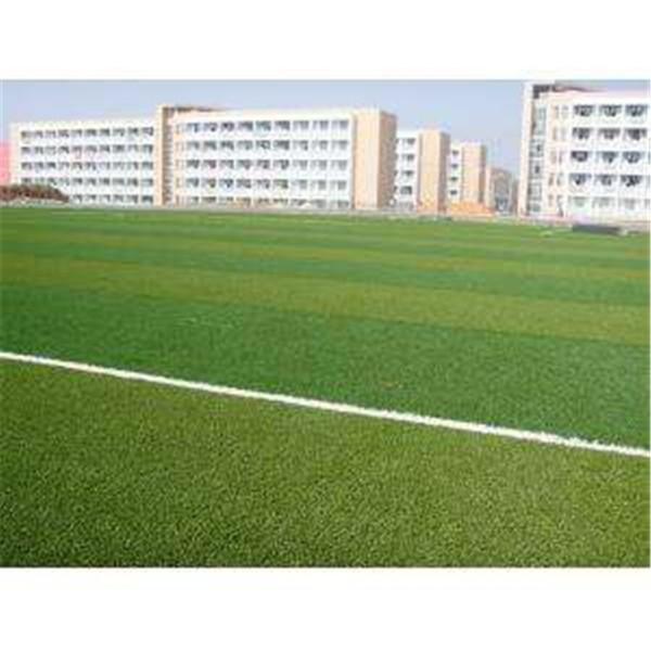 Cheap Price artificial grass for golf greens
