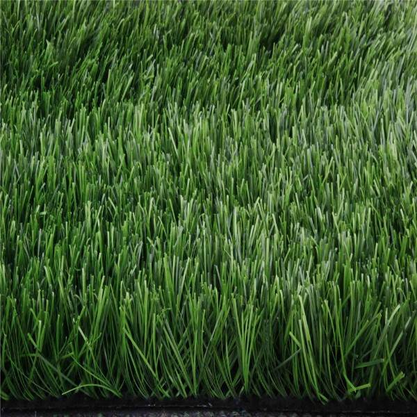 Picture artificial grass for golf greens