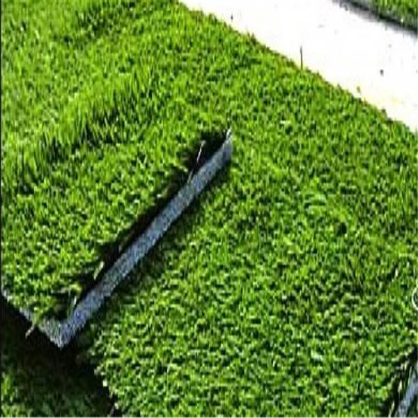 made in china artificial grass for golf mats Commercial Price