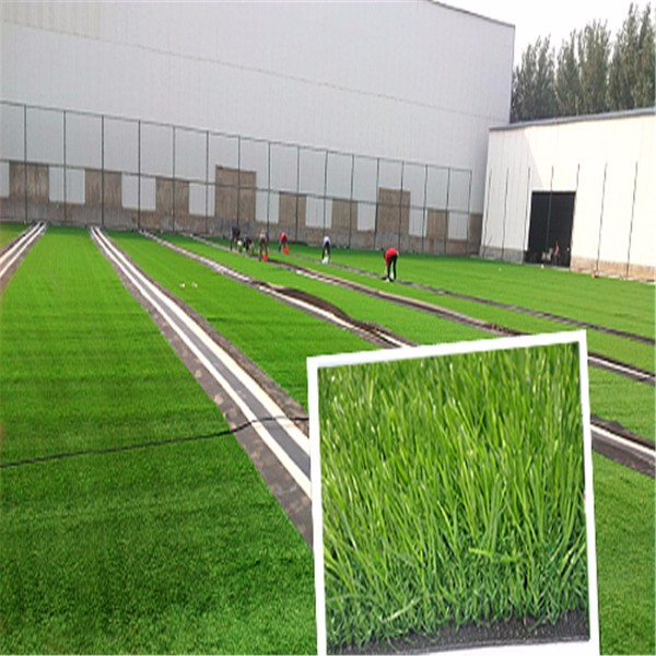 made in china Professional Manufacturer soccer artificial turf