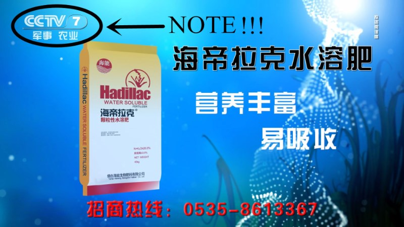 npk fertilizer Hot Sale