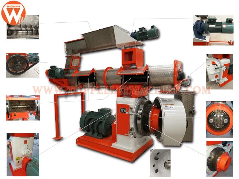 feed pellet machine professional supplier