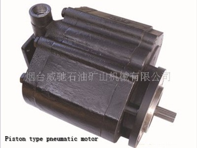 Factory Direct Piston type pneumatic motor